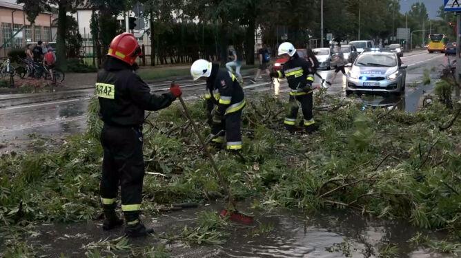 Burza powaliła drzewa w Białej Podlaskiej