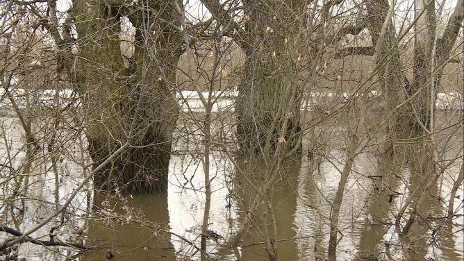 """Odwołano alarm przeciwpowodziowy w Płocku. """"Obserwuje się spadki stanu wody"""""""