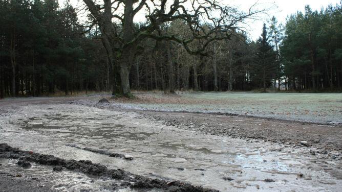 IMGW ostrzega: gołoledź, możliwe przekroczenia stanów ostrzegawczych na rzekach